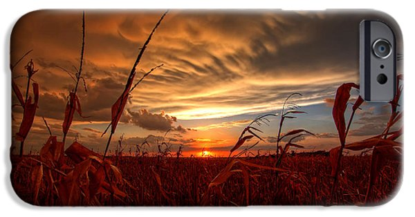 Agriculture iPhone Cases - Harvest Sunset iPhone Case by Chris  Allington