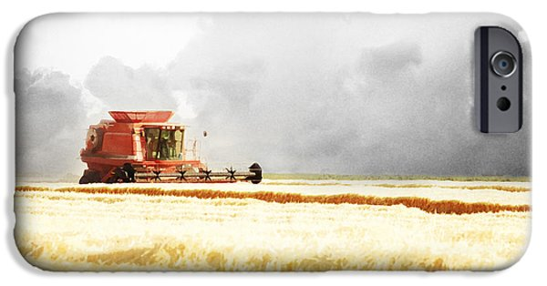 Harvest Art iPhone Cases - Harvesting the Grain iPhone Case by Cindy Singleton
