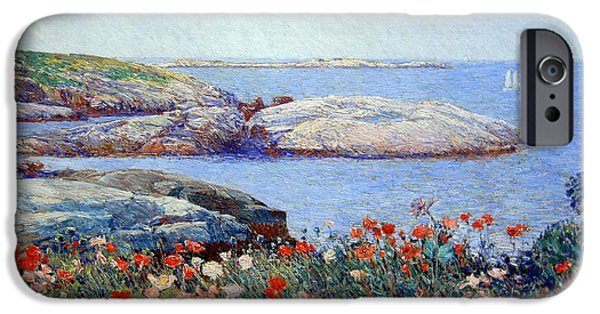 Cora Wandel iPhone Cases - Hassams Poppies On The Isles Of Shoals iPhone Case by Cora Wandel