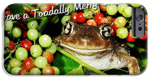 Lynda Dawson-youngclaus Photographer iPhone Cases - Have a Toadally Merry Christmas iPhone Case by Lynda Dawson-Youngclaus