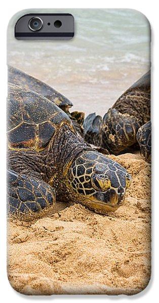 Hawaiian Green Sea Turtles 1 - Oahu Hawaii iPhone Case by Brian Harig
