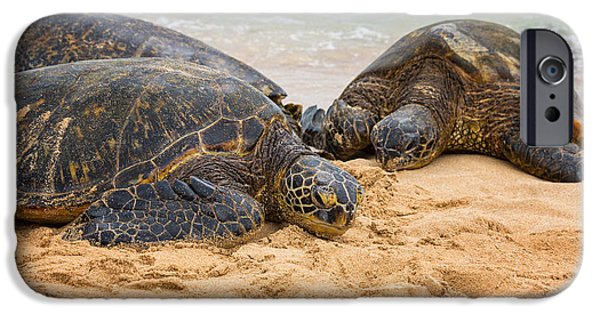 Black Top iPhone Cases - Hawaiian Green Sea Turtles 1 - Oahu Hawaii iPhone Case by Brian Harig