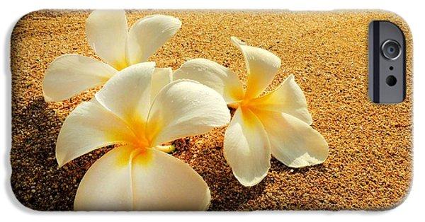 Floral Photographs iPhone Cases - Hawaiian Plumerias iPhone Case by Kristine Merc