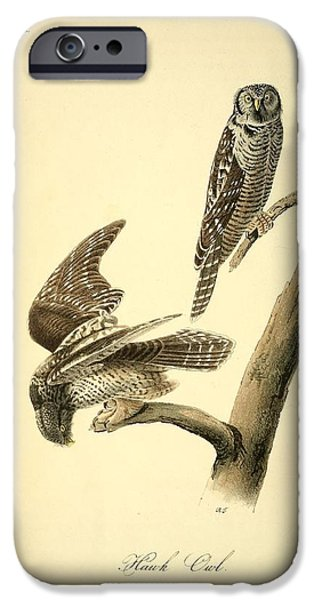 Physician Drawings iPhone Cases - Hawk Owl  iPhone Case by John James Audubon