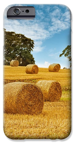 Hay Bales iPhone Case by Amanda And Christopher Elwell