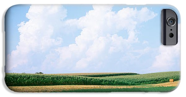 Daviess County Photographs iPhone Cases - Hay Bales In A Field, Jo Daviess iPhone Case by Panoramic Images