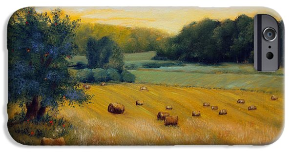 Maine Farms Paintings iPhone Cases - Hay Field  iPhone Case by Laura Tasheiko