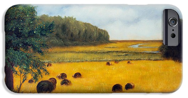 Maine Farms Paintings iPhone Cases - Hay Harvest iPhone Case by Laura Tasheiko