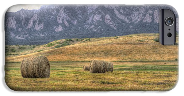 Agriculture iPhone Cases - Hay There iPhone Case by Juli Scalzi