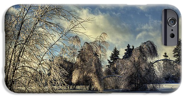 Winter Storm iPhone Cases - HDR Marshall Hill Ice Storm Trees iPhone Case by Jamie Roach