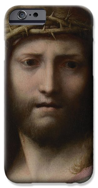 Jesus Photographs iPhone Cases - Head Of Christ, C.1530 Oil On Panel iPhone Case by Correggio