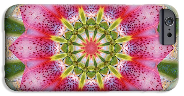 Mandala Photographs iPhone Cases - Healing Mandala 25 iPhone Case by Bell And Todd
