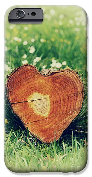 Nurture iPhone Cases - Heart of Nature iPhone Case by Tim Gainey
