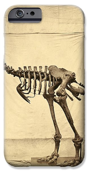 Moa iPhone Cases - Heavy Footed Moa Skeleton iPhone Case by Getty Research Institute