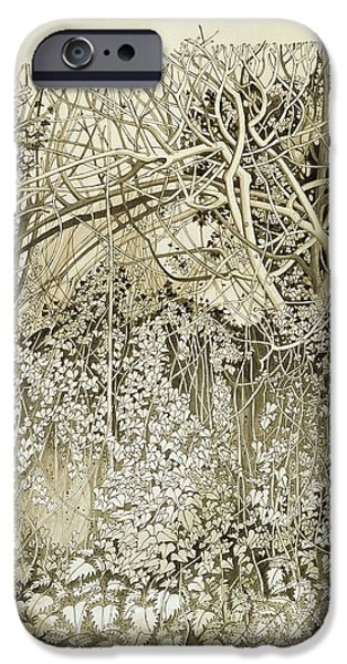 Winter iPhone Cases - Hedge And Bank Pen & Ink And Wash On Paper iPhone Case by Anna Teasdale