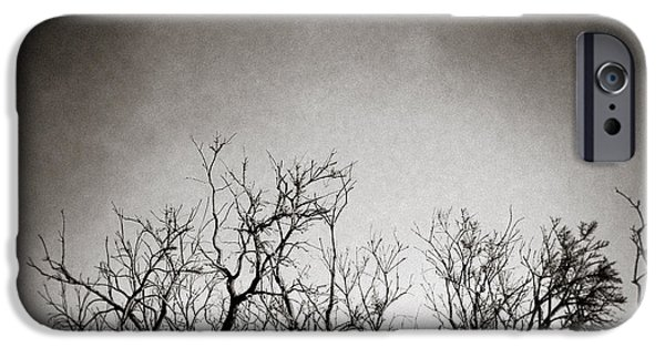 Monotone iPhone Cases - Hedgerow iPhone Case by Dave Bowman