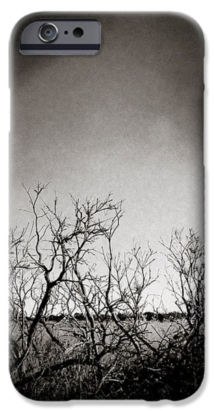 Hedgerow iPhone Case by Dave Bowman