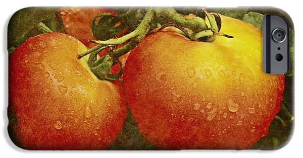 Amish Photographs Photographs iPhone Cases - Heirloom Tomatoes  iPhone Case by Chris Berry