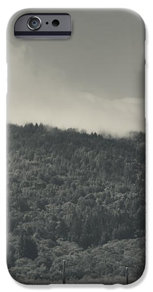 Held Back iPhone Case by Laurie Search
