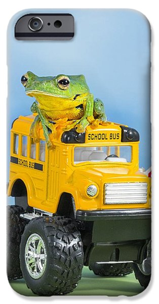 Flying Frog iPhone Cases - Helens tree frog on bus iPhone Case by Lisa Cuchara
