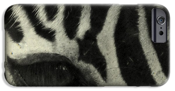 Animals Photos iPhone Cases - Hello iPhone Case by Gothicolors Donna Snyder