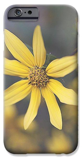 Faith Simbeck iPhone Cases - Hello Yellow iPhone Case by Faith Simbeck