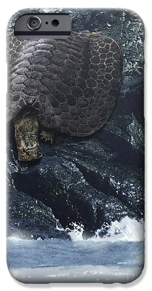 Triassic iPhone Cases - Henodus Turtle At The Waters Edge iPhone Case by Jan Sovak