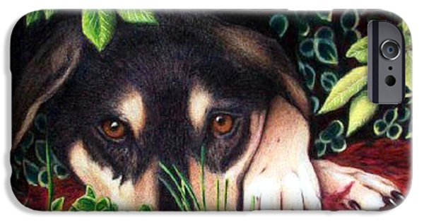Black Dog iPhone Cases - Henry iPhone Case by Danielle R T Haney