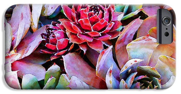 Flora Photographs iPhone Cases - Hens and Chicks series - Copper Tarnish  iPhone Case by Moon Stumpp