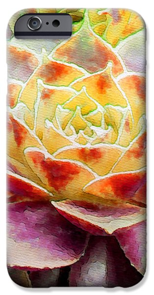 Hens and Chicks Series - Early Morning Quite iPhone Case by Moon Stumpp