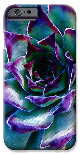 Hens and Chicks series - Evening Hues iPhone Case by Moon Stumpp