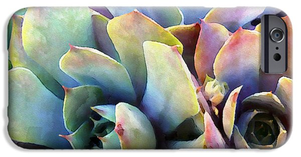 Fine Art Photo iPhone Cases - Hens and Chicks series - Soft Tints iPhone Case by Moon Stumpp