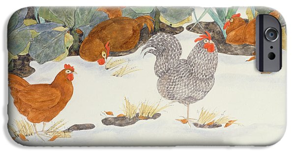 Snow iPhone Cases - Hens In The Vegetable Patch iPhone Case by Linda Benton
