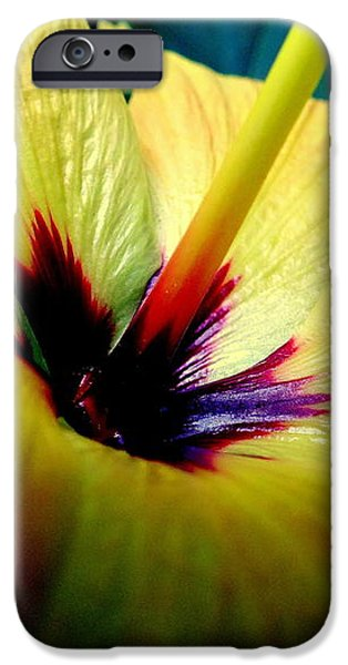 Her Majesty iPhone Case by KAREN WILES