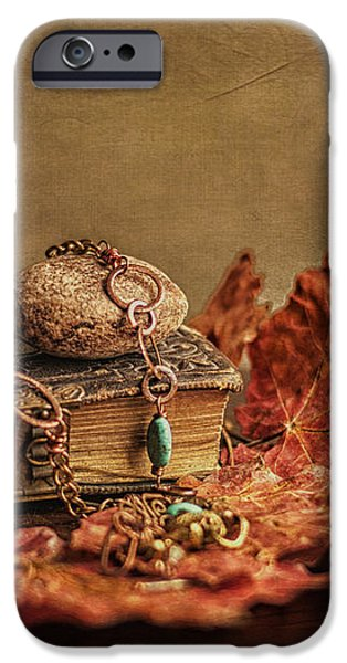 Her Old Diary iPhone Case by Terry Rowe