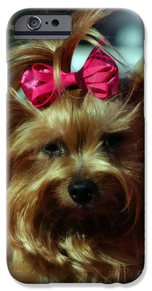 Her Pinkness iPhone Case by Steven  Digman