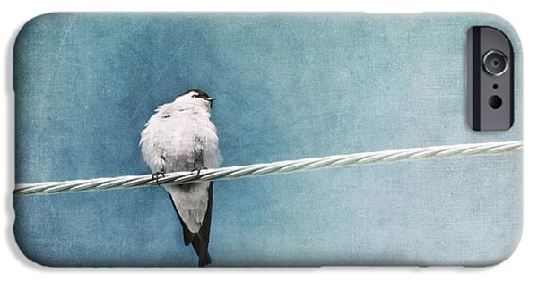Swallows iPhone Cases - Herald Of Spring iPhone Case by Priska Wettstein