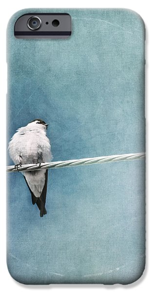 herald of spring iPhone Case by Priska Wettstein