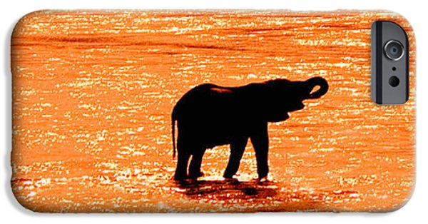 Young iPhone Cases - Herd Of African Elephants Loxodonta iPhone Case by Panoramic Images
