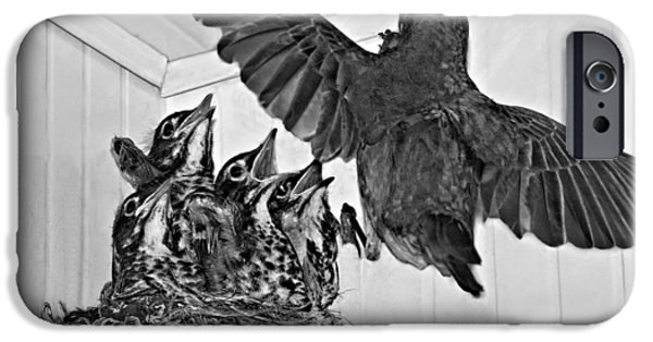 Baby Bird iPhone Cases - Here Comes Mom monochrome iPhone Case by Steve Harrington