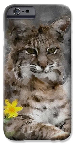 Bobcats Digital iPhone Cases - Here Kitty Kitty iPhone Case by Dennis Wickerink