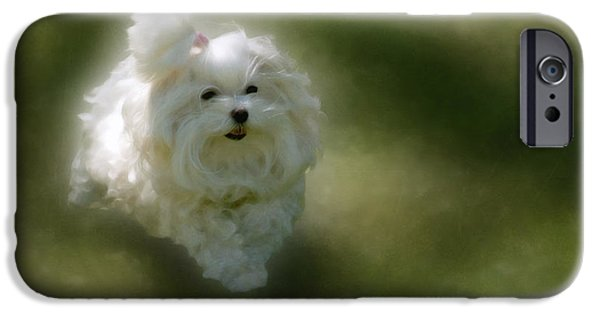 Dog Running. iPhone Cases - Here She Comes iPhone Case by Lois Bryan
