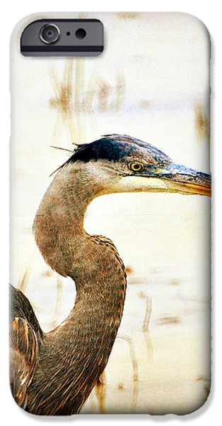 Heron 33 iPhone Case by Marty Koch