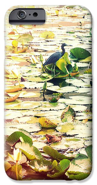 Lilly Pads iPhone Cases - Heron Among Lillies Photography Light Leaks iPhone Case by Chris Andruskiewicz