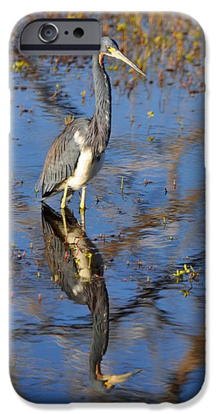 Heron and Reflection in Jekyll Island's Marsh iPhone Case by Bruce Gourley
