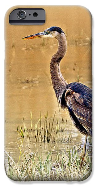 Heron At Sunset iPhone Case by Marty Koch