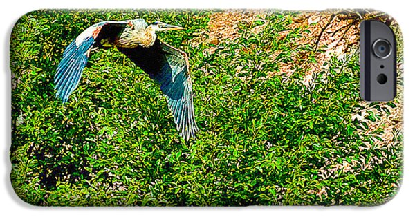 Oak Creek iPhone Cases - Heron flies Over Oak Creek in Red Rock State Park Sedona Arizona iPhone Case by  Bob and Nadine Johnston
