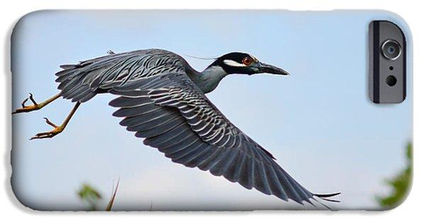 Florida Wildlife iPhone Cases - Heron Flight iPhone Case by Laura  Fasulo