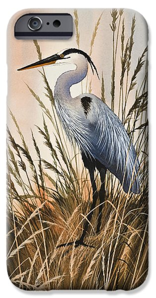 Heron Paintings iPhone Cases - Heron in Tall Grass iPhone Case by James Williamson