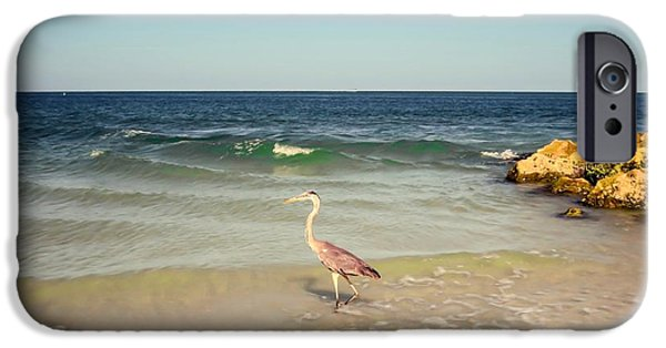 Summer iPhone Cases - Heron on the beach iPhone Case by Zina Stromberg